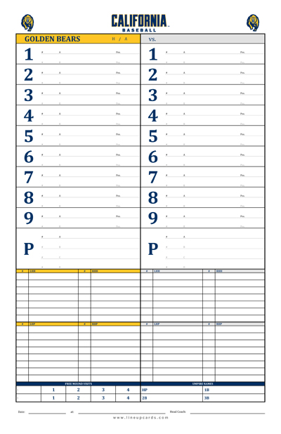 Custom College Baseball Dugout Cards  Charts With College